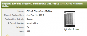 Birth Index APM