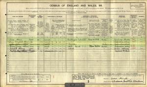 1911 census original image HJA