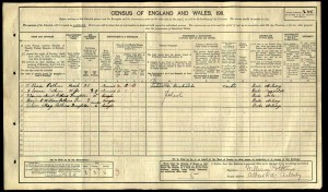 William_Potkin_Census_1911